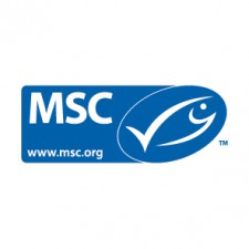 Meer info over MSC