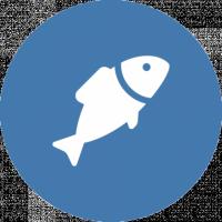 Espèces de poisson
