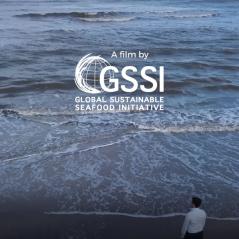 GSSI movie
