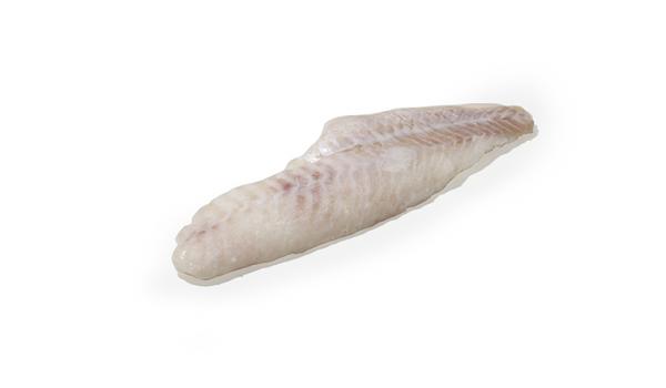 dorade-sébaste filet