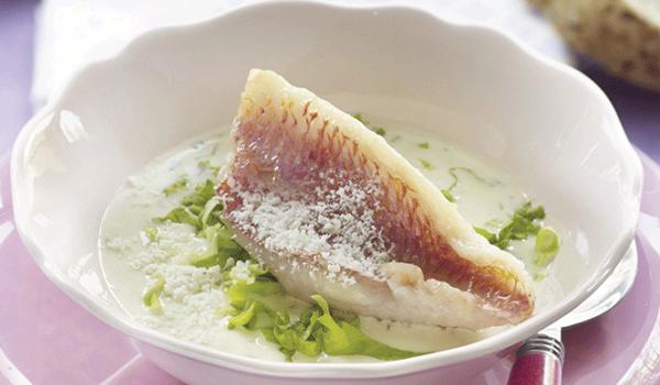 Zeebarbeel soep recept
